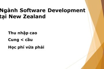 software development-Edenz Colleges