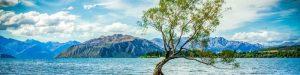 Du học New Zealand - Lake